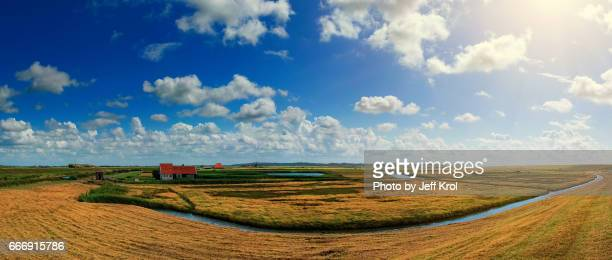 Panoramic dutch landscape view of nature, blue cloudy sky with sun in the back.