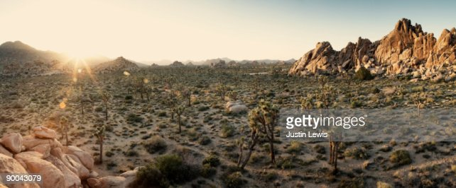 Panoramic high desert landscape at sunset : Stock Photo