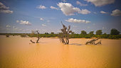 Panoramic landscape view to sahel and oasis Dogon Tabki with flooded river at Dogondoutchi, Niger