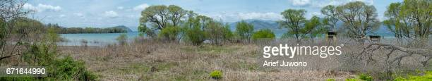 Panoramic of Biwa Lake