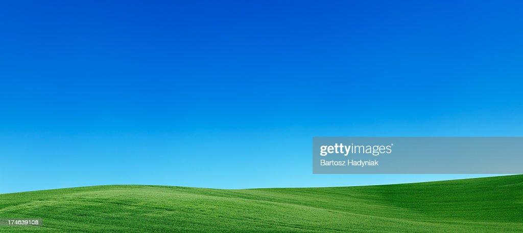 Panoramic spring landscape 55MPix  XXXXL meadow, blue sky