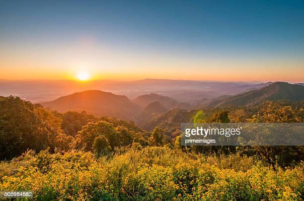 Vista panorâmica de manhã misty nascer do sol nas montanhas no Norte, Tailândia
