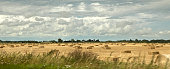 A panoramic view of a field with straw bales
