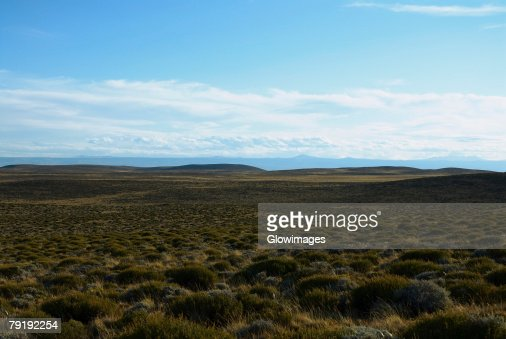 Panoramic view of a landscape, National Route 40, Patagonia, Argentina : Foto de stock