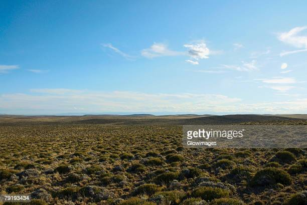 Panoramic view of a landscape, National Route 40, Patagonia, Argentina