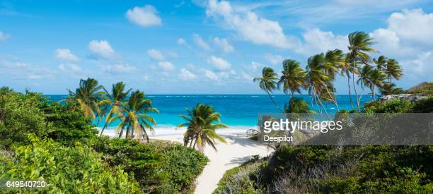 Panoramic View of Bottom Bay Beach and Palm Trees in Barbados