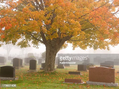 Panoramic view of cemetery under a giant sweet gum tree