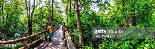 Panoramic View Of Friends Standing On Wooden Bridge At Boerner Botanical Gardens