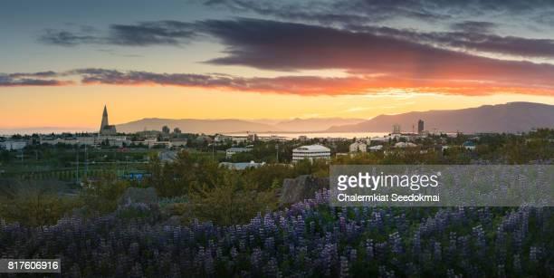 Panoramic view of Reykjavik in Summer