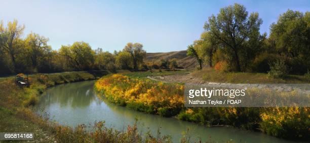 Panoramic view of stream in autumn