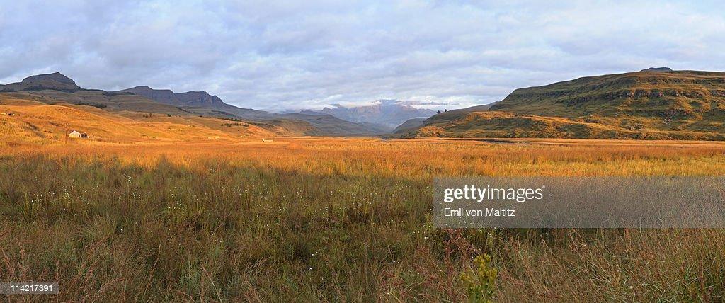 Panoramic view of the Mweni Valley at dawn, Drakensberg uKhahlamba National Park, Kwazulu-Natal, South Africa