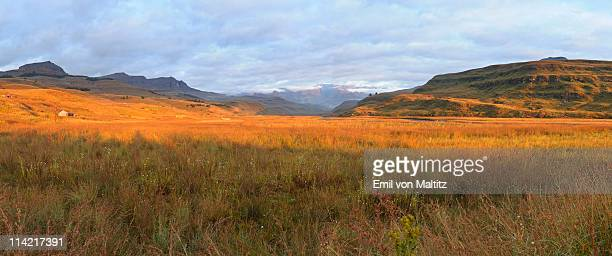 Panoramic view of the Mweni Valley at dawn, Drakensberg uKhahlamba National Park, Kwazulu-Natal, South Africa