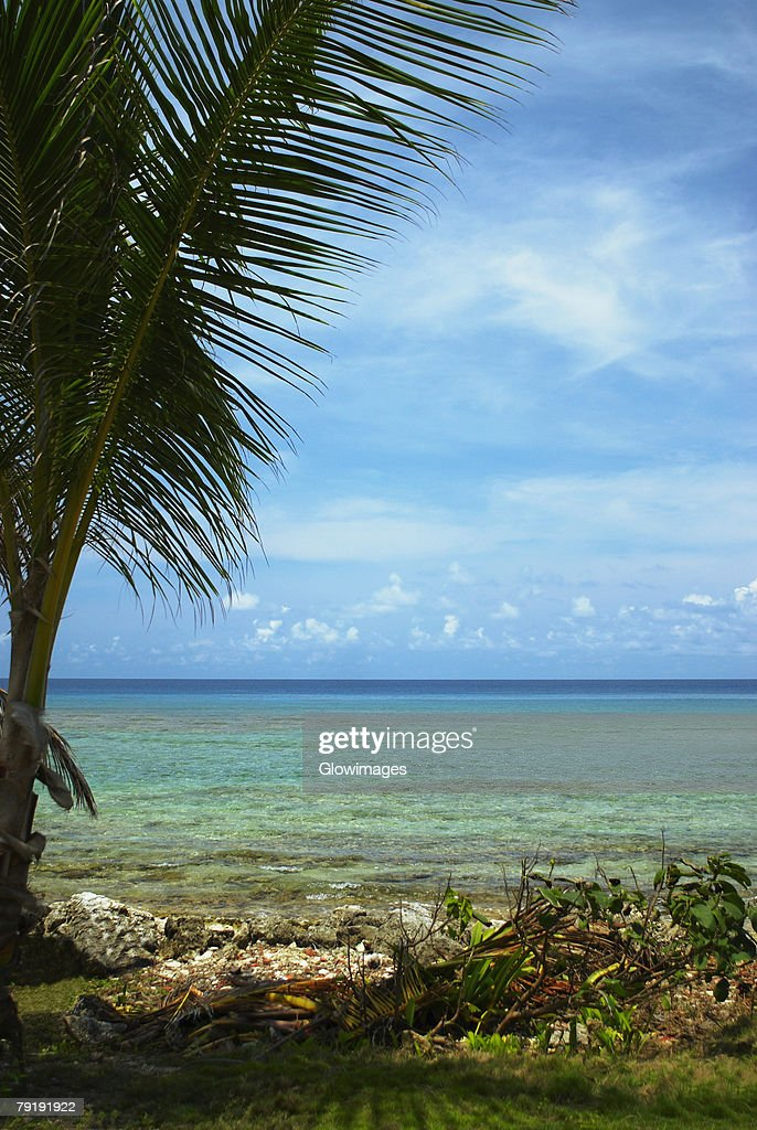 Panoramic view of the sea, San Andres, Providencia y Santa Catalina, San Andres y Providencia Department, Colombia : Foto de stock
