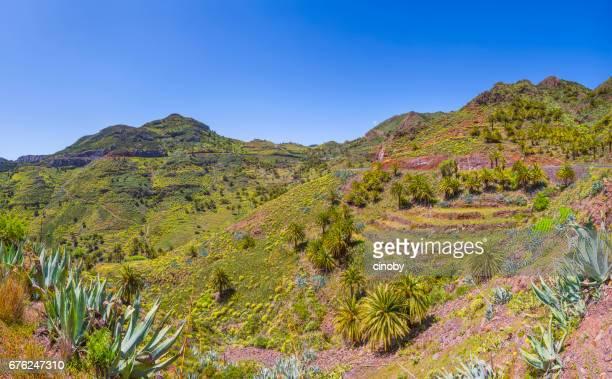 Panoramic view of Valley near by Vegaipala on Canary Islands La Gomera in the province of Santa Cruz de Tenerife - Spain