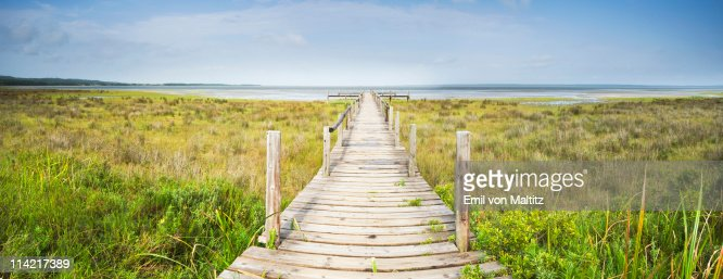 Panoramic view of wooden jetty leading towards lake, Catalina Bay, iSimangaliso Wetland Park, St Lucia, Kwazulu-Natal, South Africa
