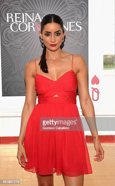 Paola Nunez attends Premiere of Telemundos 'Reina De Corazones' at Port of Miami on July 7 2014 in Miami Florida