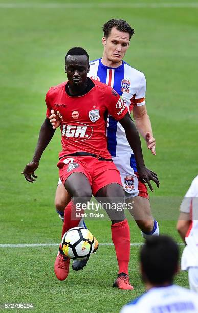 Papa Babacar Diawara of Adelaide during the round six ALeague match between Adelaide United and the Newcastle Jets at Coopers Stadium on November 11...