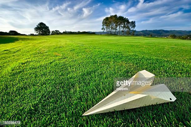 Aeroplano di carta nel Nature.Color immagine