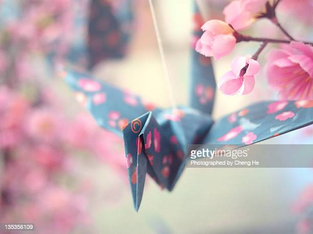 Paper Bird in Sakura Blossom