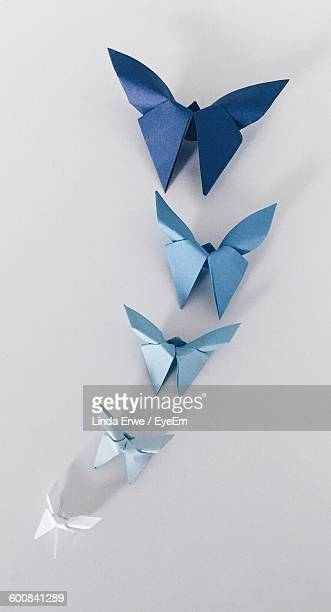 Paper Butterflies On Wall
