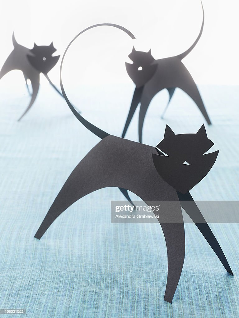 Paper Cats : Stock Photo