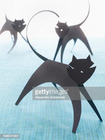 Paper Cats : Stockfoto