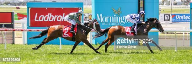 Paper Chaser ridden by Ben Allen wins the Evergreen Turf Plate at Mornington Racecourse on November 13 2017 in Mornington Australia