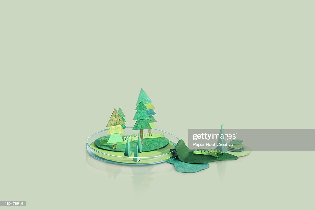 Paper Craft mountains and trees on a petri dish : Stock Photo