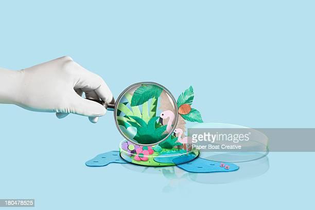 Paper Craft World inside a petri dish