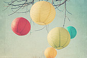 paper lanterns hanging from tree
