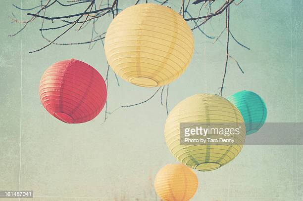 paper lanterns hanging from tree