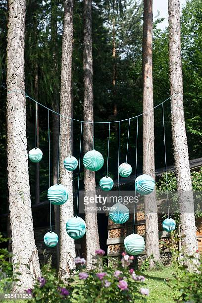 Paper lanterns in the woods