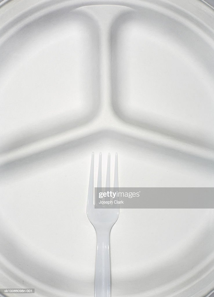 Paper plate and plastic fork, close-up