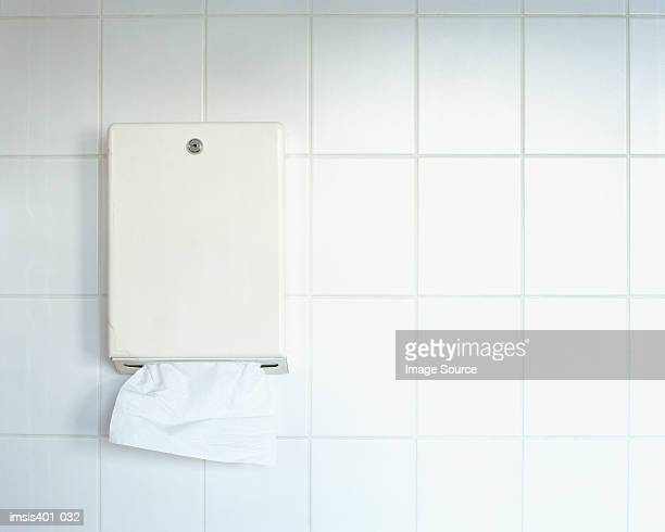Paper towel dispenser on wall