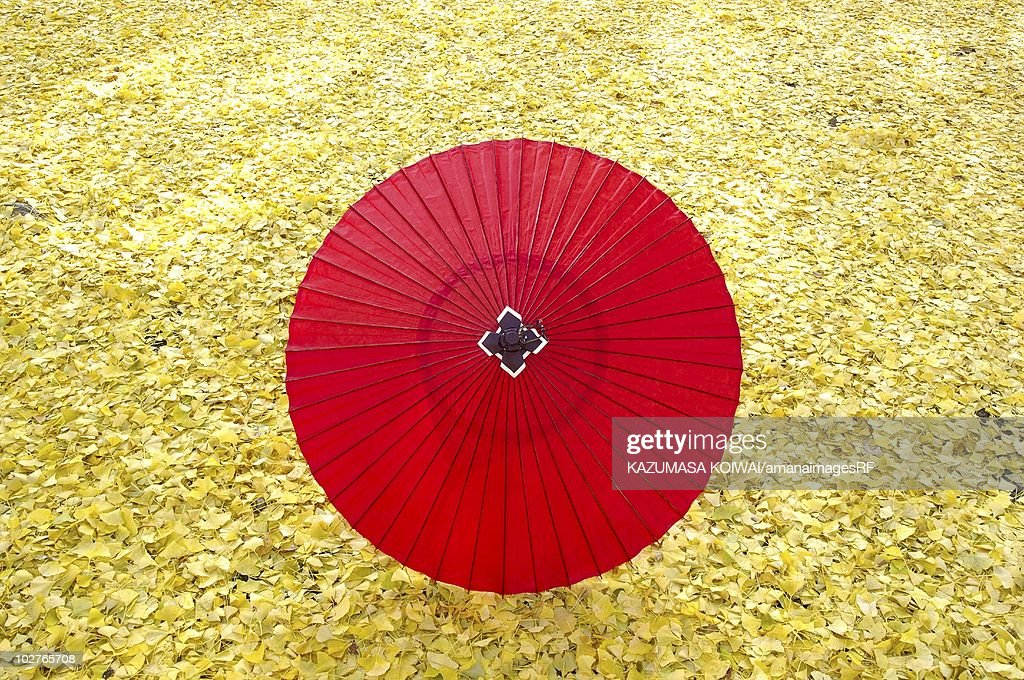 Paper umbrella on fallen leaves