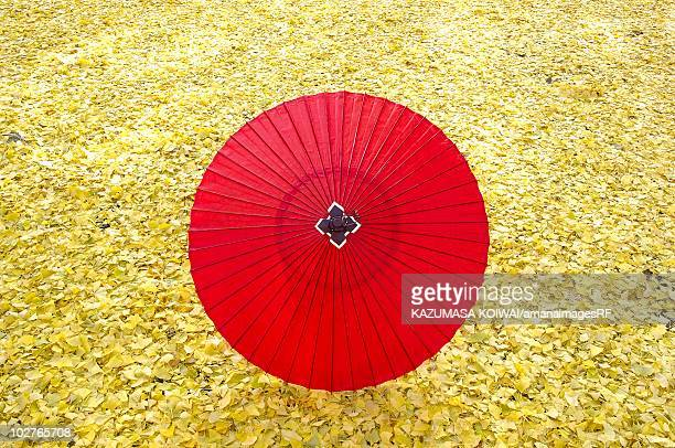 Paper umbrella on fallen leaves