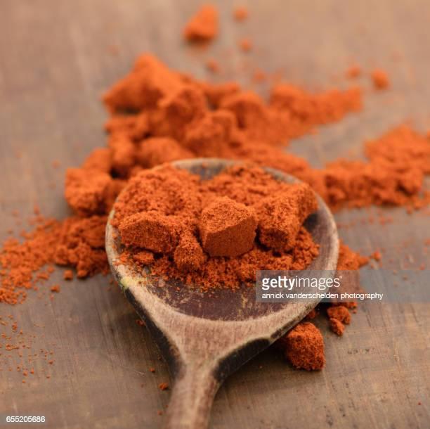Paprika powder on wooden spoon.