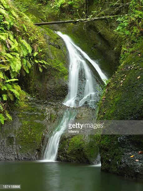 Papua Cascata Rarotonga Isole Cook