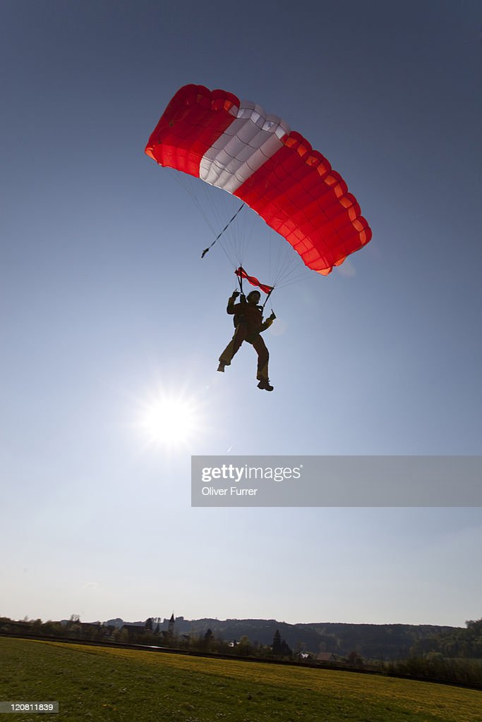 Parachutist under canopy is going to land on gras.