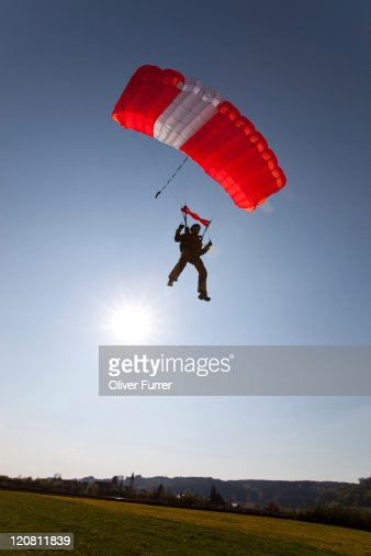 Parachutist under canopy is going to land on gras. : Stock Photo