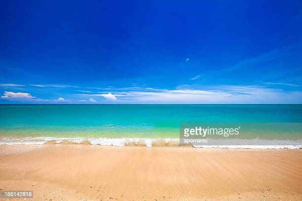 Paradisaical tropical golden sand Hawaiian beach