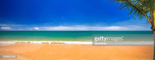 Paradisaical tropical golden sand Hawaiian beach