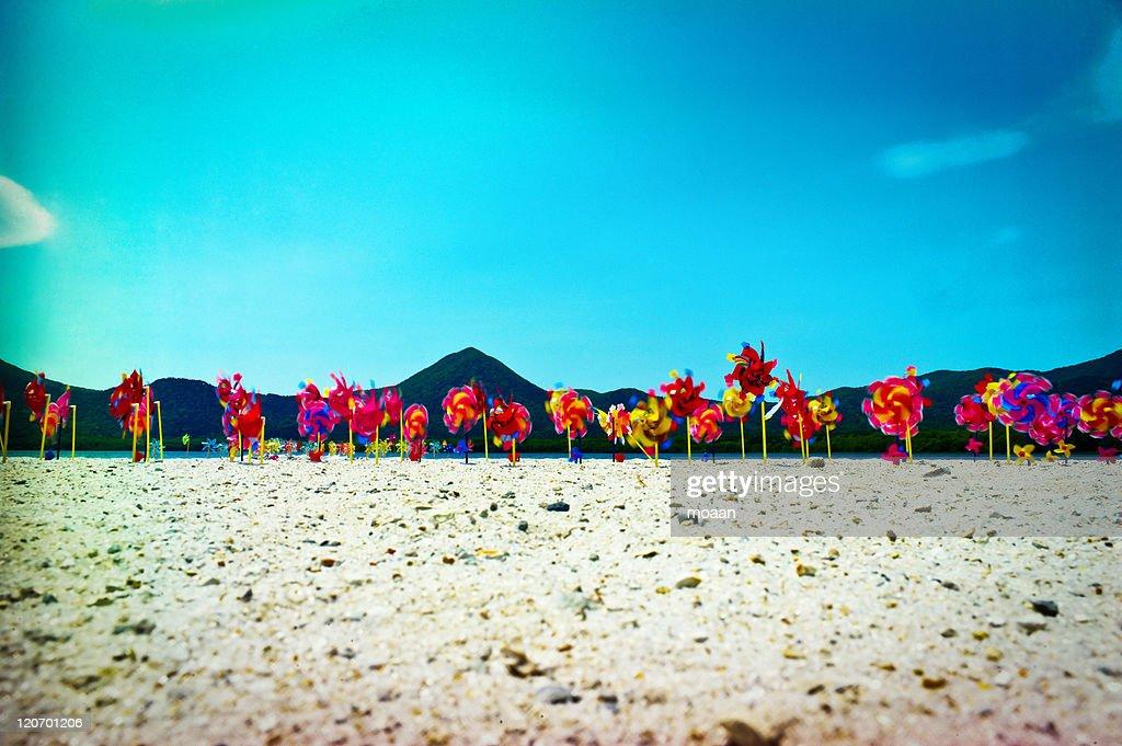 Paradise Beach : Stock Photo