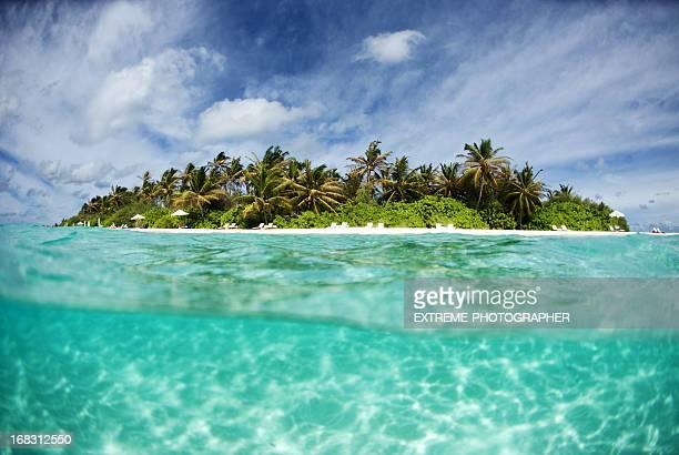 Ilha Paradise