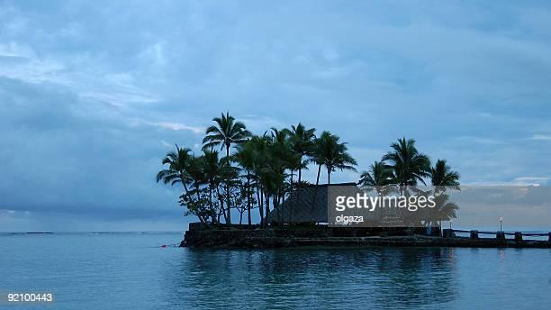 パラダイス island