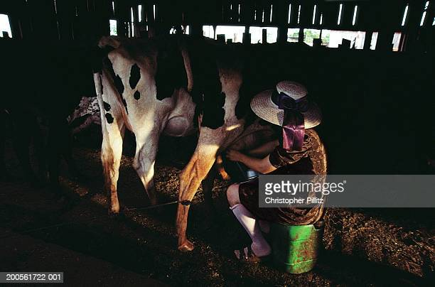 Paraguay, Rio Verde community, Mennonite female farmer milking cow