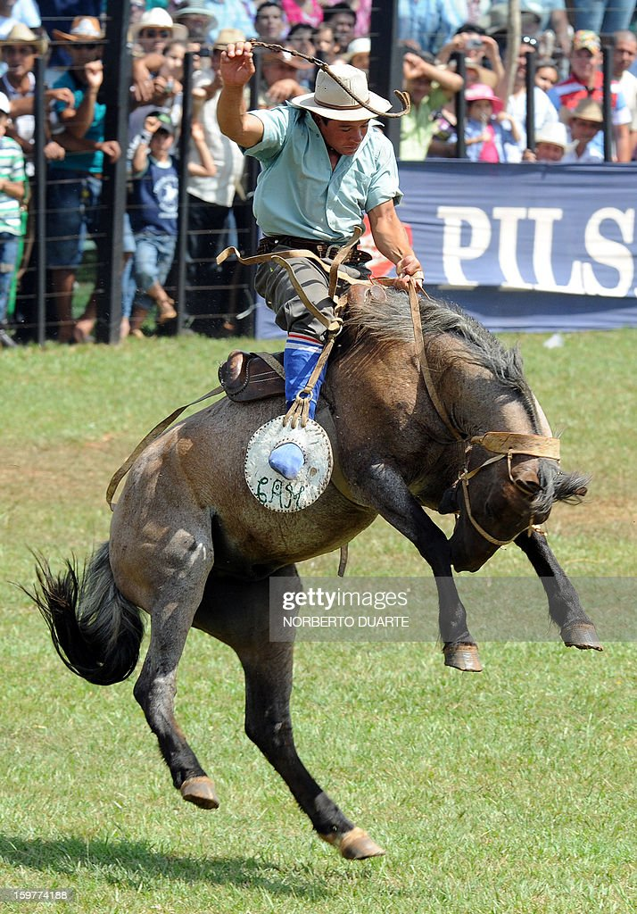 A Paraguayan gaucho rides a colt on January 20 2013 during the Misiones Traditional Festival held yearly in Santiago Misiones some 270 km south of...