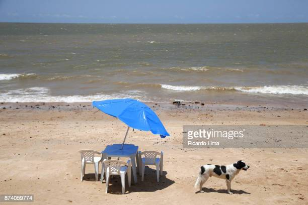 Paraiso Beach, Mosqueiro Island, Brazil