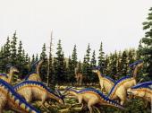 Parasaurolophus sp Hadrosauridae Late Cretaceous Illustration