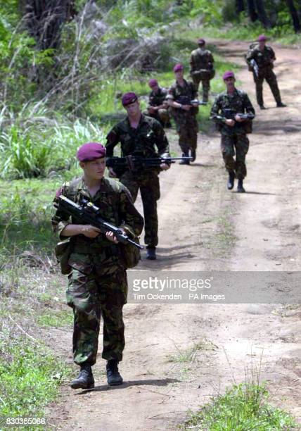 Paratroopers from C Company 1 Para patrol the jungle north of Lungi Airport in Freetown Sierra Leone 13/02/02 A longawaited Foreign Office Green...